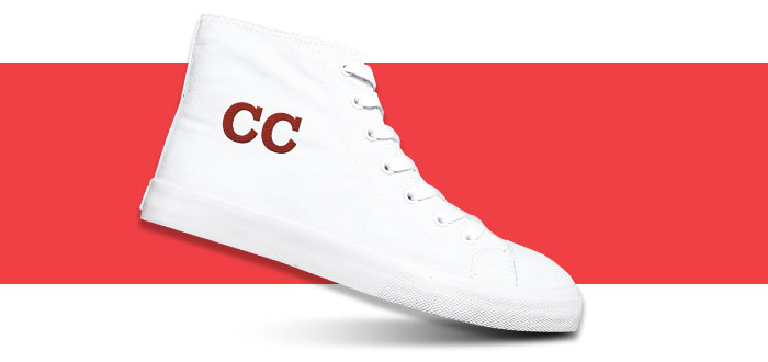 Canvas Shoe image